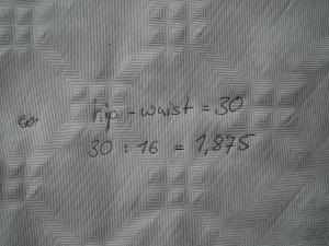 DSCF4523
