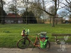cycling-12